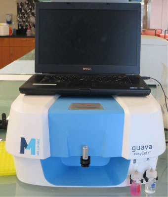 Cell Tissue And Molecular Analysis Ctma Core