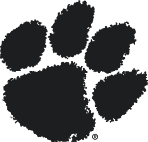 Tiger Paw Dark Gray