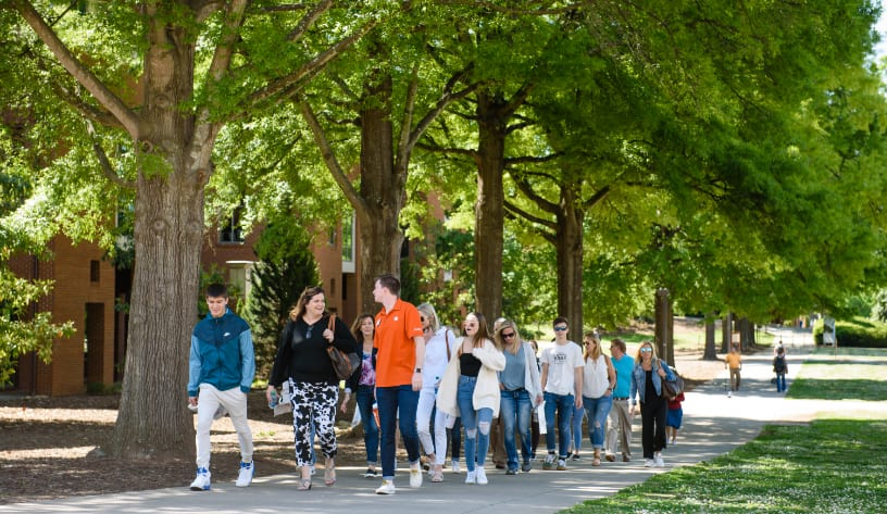 Student tour guide leads a tour group through campus, walking a tree-lined path.