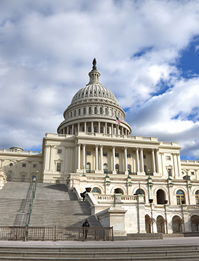 The Senior Seminar in Public Policy course allows you to apply what you've learned toward a detailed analysis of a current public-policy issue. The course includes a trip to Washington, D.C., where you'll meet with policymakers and analysts.