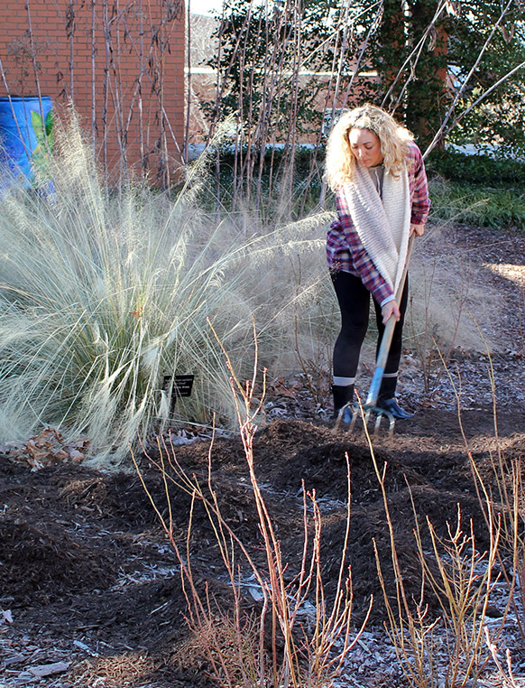 An on-campus garden was designed and implemented to demonstrate sustainable garden practices using native plantings, innovative installation and maintenances practices.