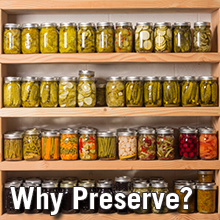 Why foods need to be preserved college of agriculture forestry why foods need to be preserved forumfinder Choice Image