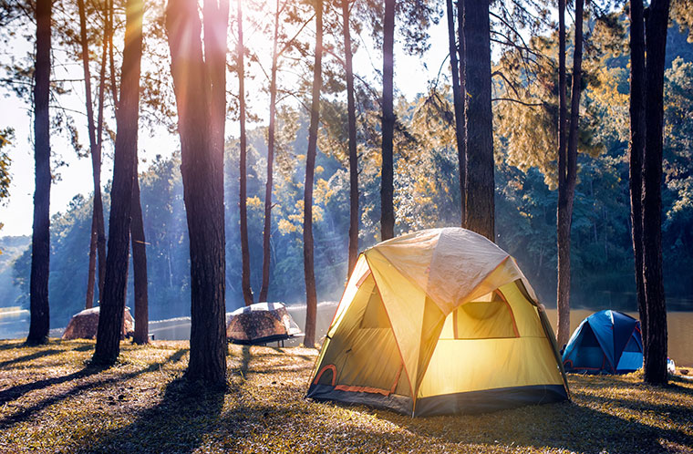 Camping in a forest by a lake