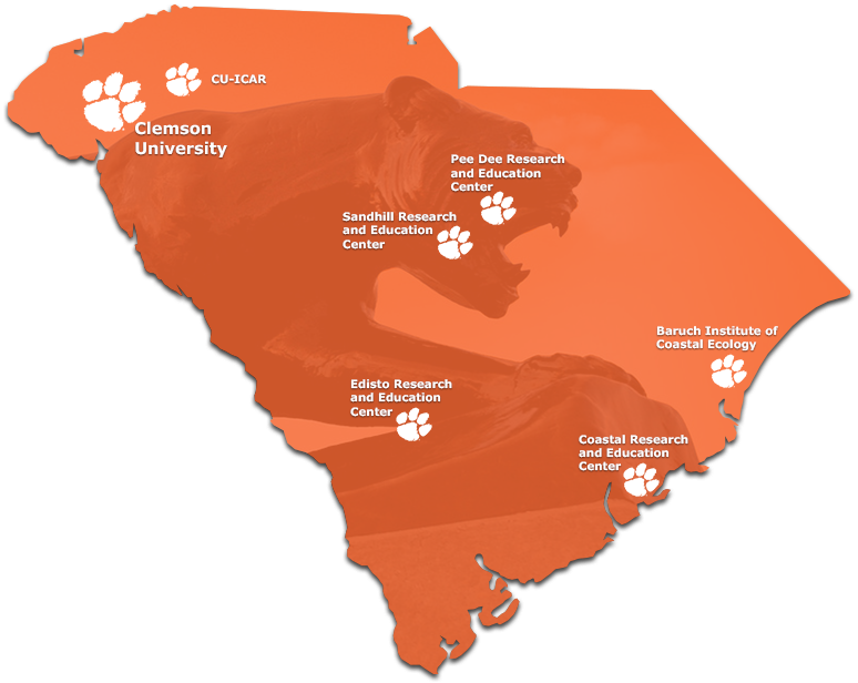 Clemson Careers on reidville sc map, arcadia lakes sc map, batesville sc map, private colleges in sc map, rocky bottom sc map, antreville sc map, table rock state park sc map, cades sc map, berkeley sc map, fredericksburg tx map, johnson city sc map, chappells sc map, conestee sc map, forestbrook sc map, denver sc map, bluffton sc map, cokesbury sc map, south carolina road map, clemson university, upcountry sc map,